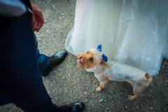 fotografo-de-bodas-jiten-dadlani-postboda-marian-carlos-8